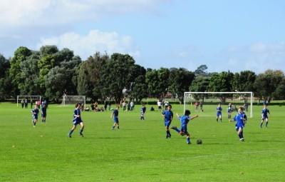 サッカー (Soccer )