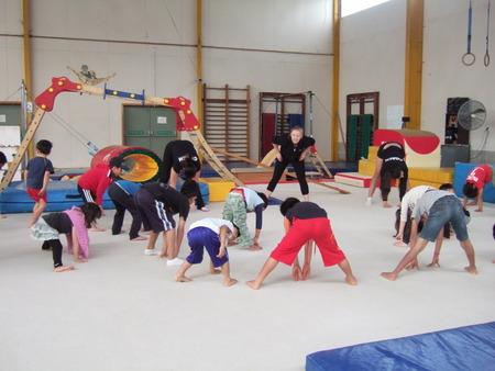 ワイタケレ・ジムナスティックス (Waitakere Gymnastics)