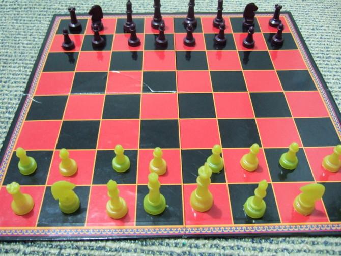こどもニュージーランド チェス トランプ