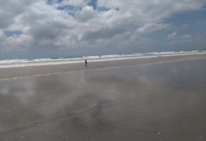 Ninety Mile Beach ナインティ・マイル・ビーチ