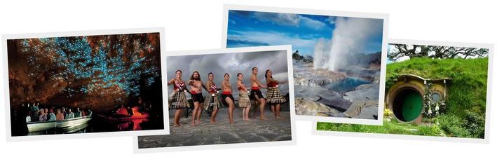 こども ニュージーランド 親子留学 ツアー プログラム 6