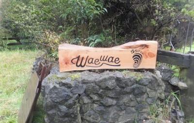 ニュージーランド体験 Waewae