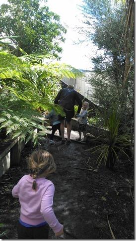 ニュージーランド アルバニー 幼稚園 自然