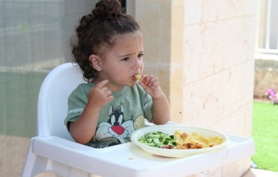 子供の食事 健康 ニュージーランド