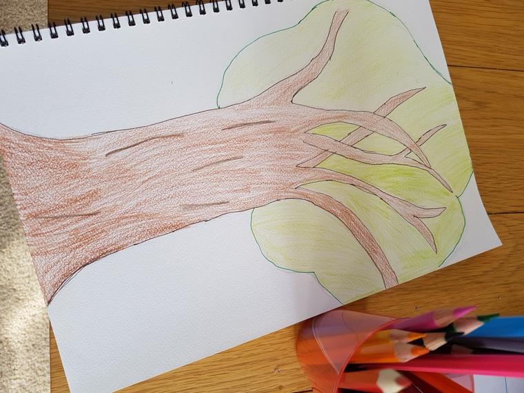 ニュージーランド 子供向けアートセラピー
