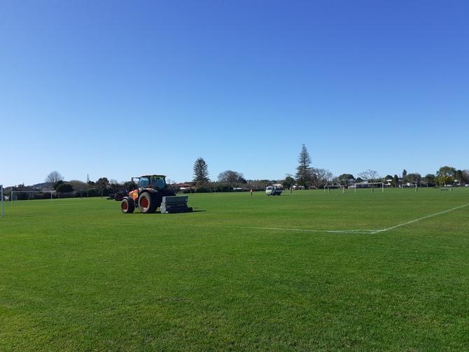 ニュージーランド ロックダウン 公園 芝生